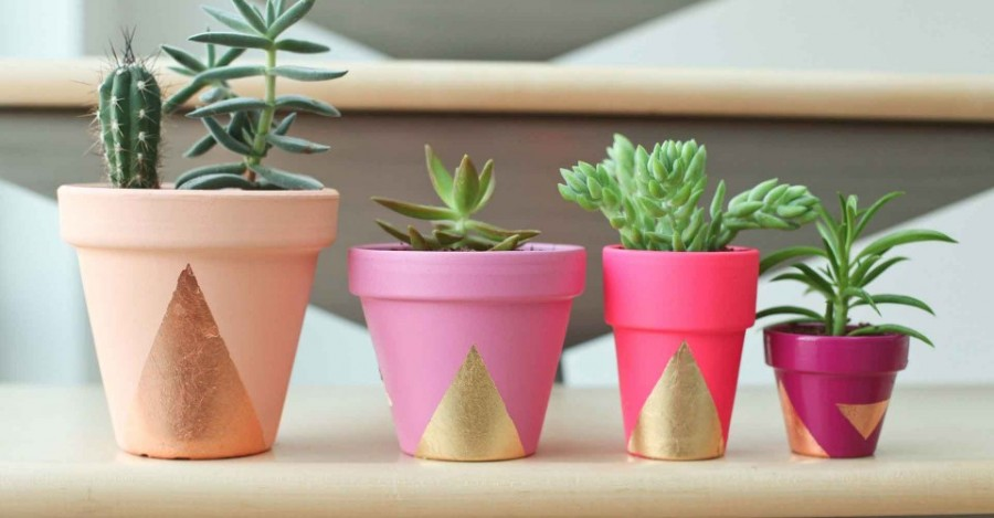 DIY+Succulent+Planters