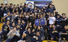 Womens and Mens Wrestling Teams Win CIF Dual Titles, City Title