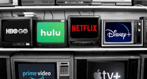 The popularity of streaming services grows among TV-watchers