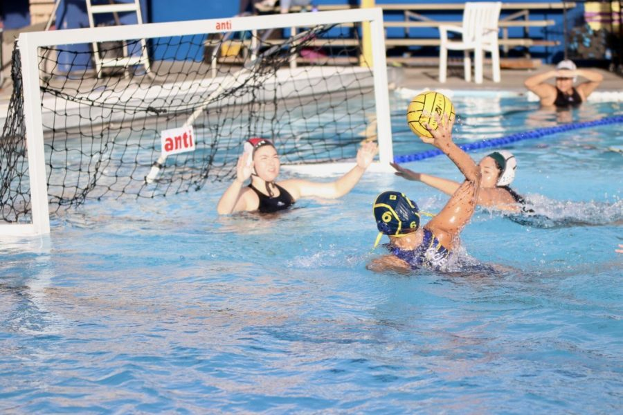 BCCHS Girls Water Polo Wins LA City Championship